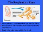 the respiratory zone61