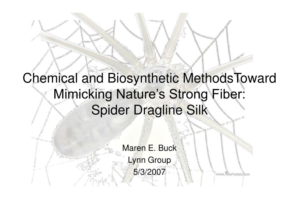 chemical and biosynthetic methodstoward mimicking nature s strong fiber spider dragline silk l.