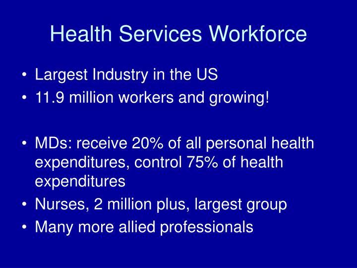 Health services workforce3