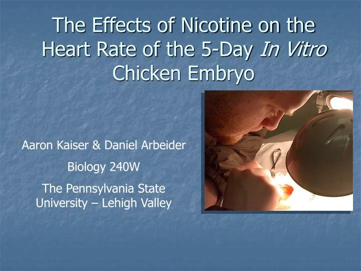 effects of caffeine and nicotine on Caffeine, nicotine, and mood 455 once inmates are released back to the community, some benefit in coping skills and adjustment might accrue from reductions in.