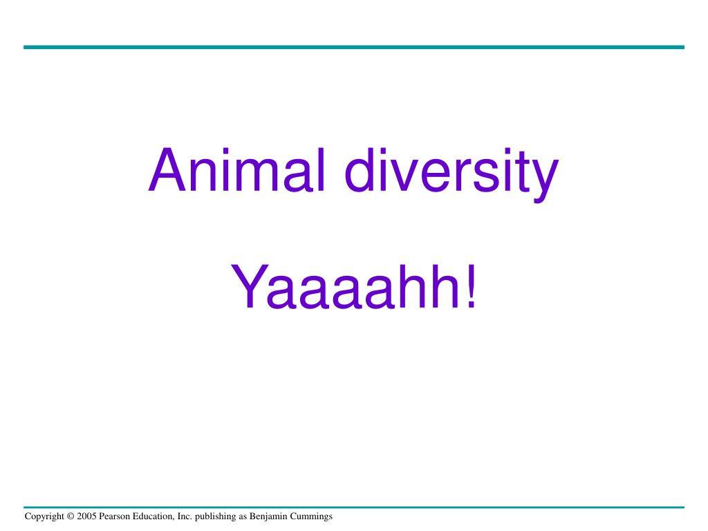 Animal diversity