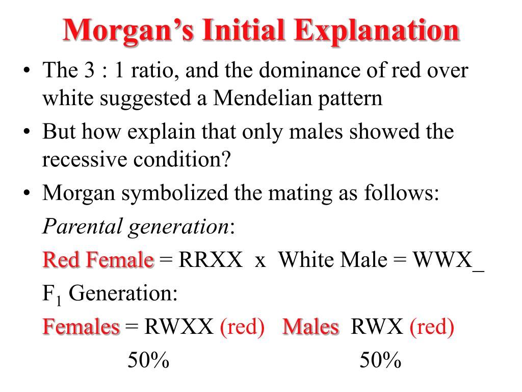 Morgan's Initial Explanation