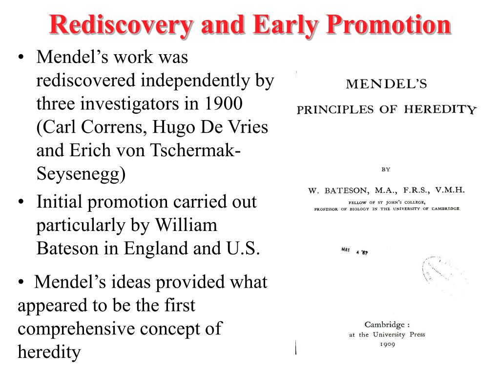 Rediscovery and Early Promotion