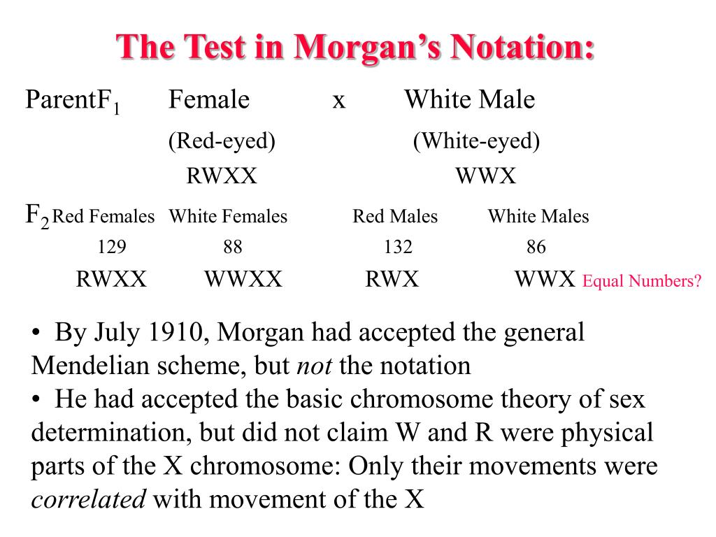 The Test in Morgan's Notation: