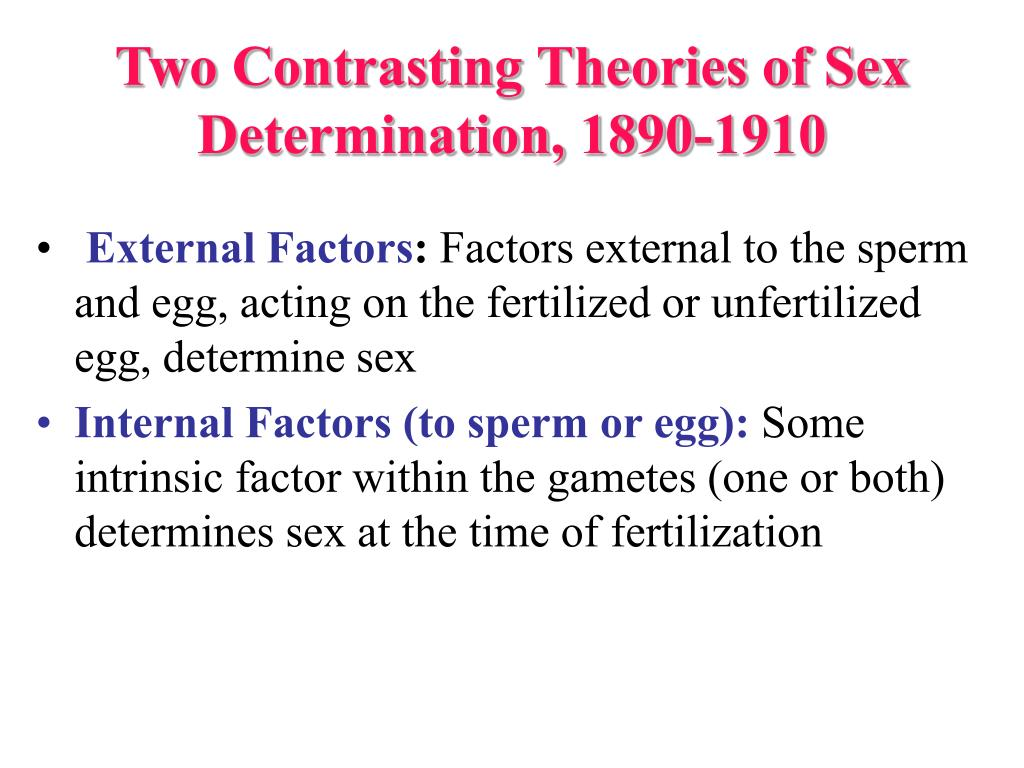 Two Contrasting Theories of Sex Determination, 1890-1910