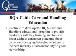 bqa cattle care and handling education