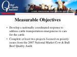 measurable objectives8
