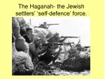 the haganah the jewish settlers self defence force