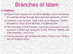 branches of islam28