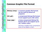 common graphic file format