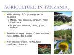 agriculture in tanzania 2