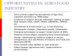opportunities in agro food industry