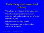 establishing team norms and culture