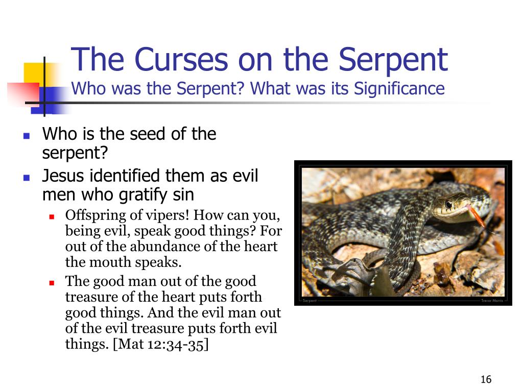The Curses on the Serpent