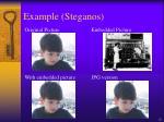 example steganos