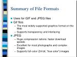 summary of file formats