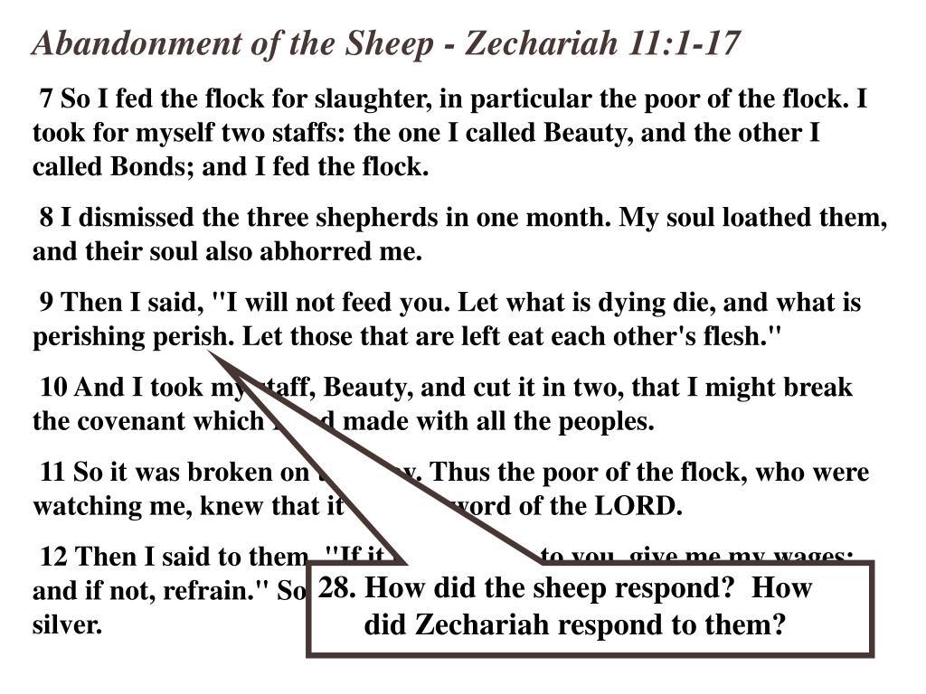 Abandonment of the Sheep - Zechariah 11:1-17