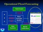 operational flood forecasting31