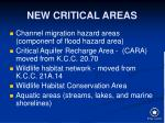 new critical areas