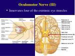 oculomotor nerve iii