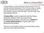 what is a kaizen blitz