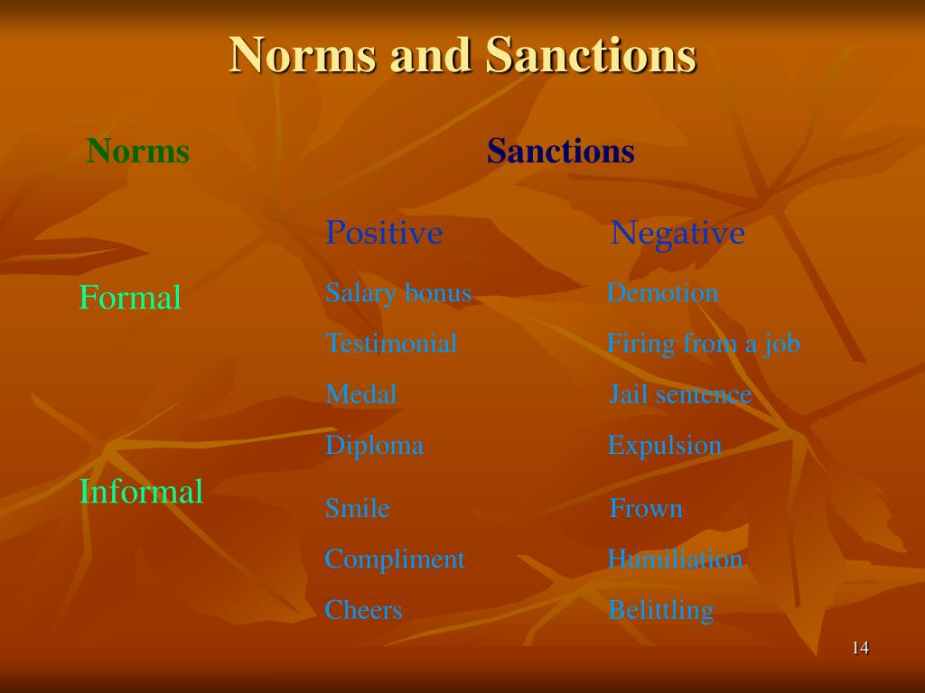 Norms and Sanctions