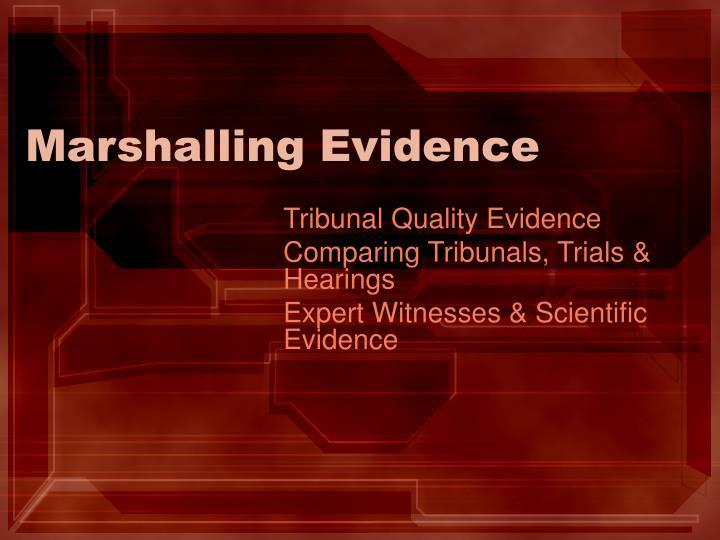 Marshalling evidence
