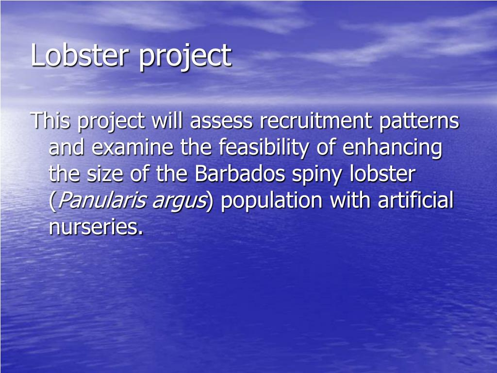 Lobster project