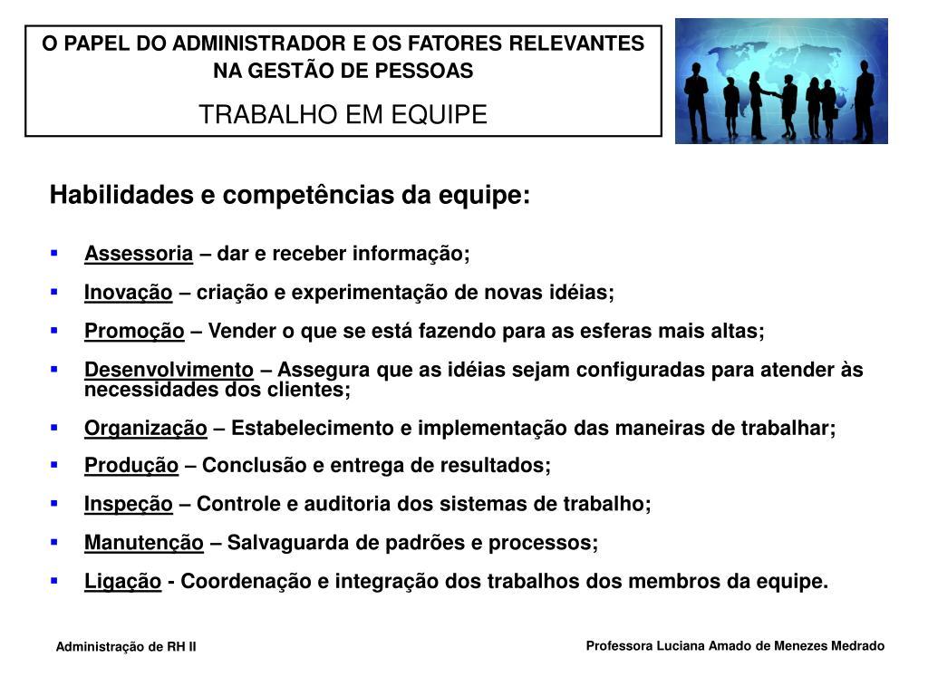 Habilidades e competências da equipe: