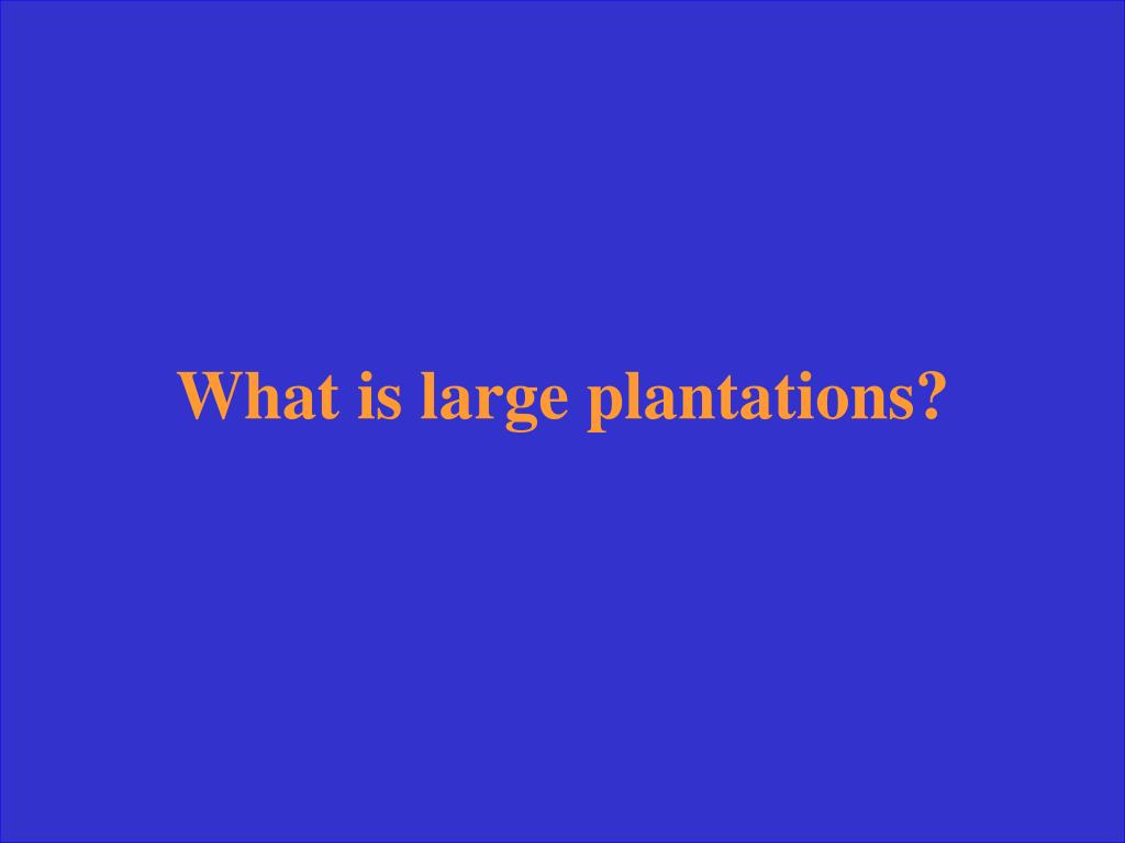 What is large plantations?