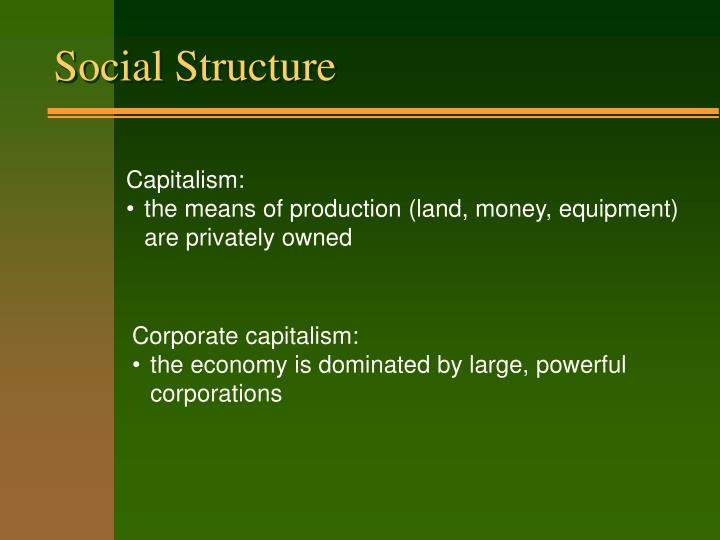 an analysis of the social structure in the family and the economics of the capitalism