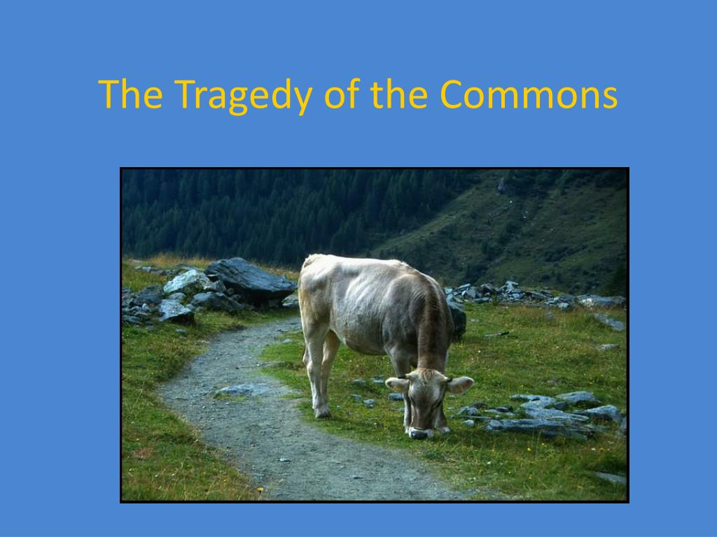 the tragedy of the commons l.