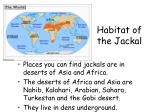habitat of the jackal