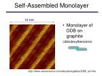 self assembled monolayer