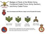 badges of rank of the british army combined cadet force army section and army cadet force10