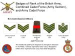 badges of rank of the british army combined cadet force army section and army cadet force9