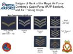 badges of rank of the royal air force combined cadet force raf section and air training corps17