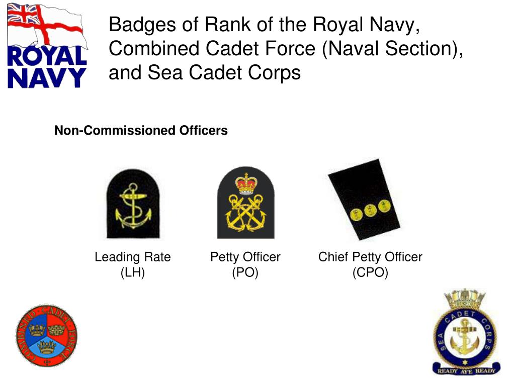 PPT - British Armed Forces Badges of Rank ( including those unique