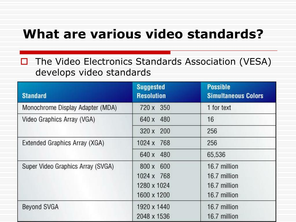 What are various video standards?