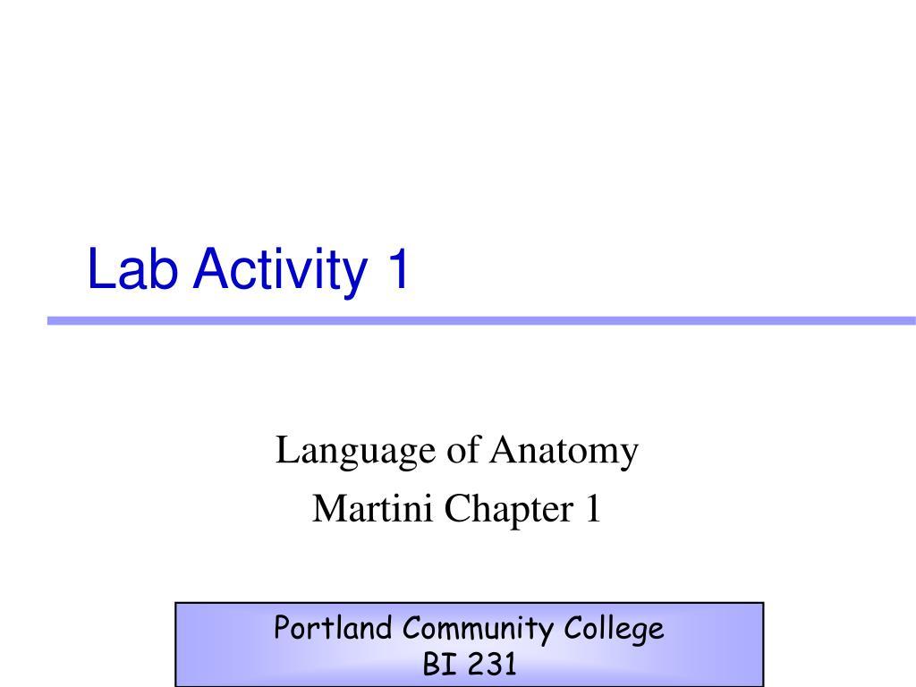 PPT - Lab Activity 1 PowerPoint Presentation - ID:174488