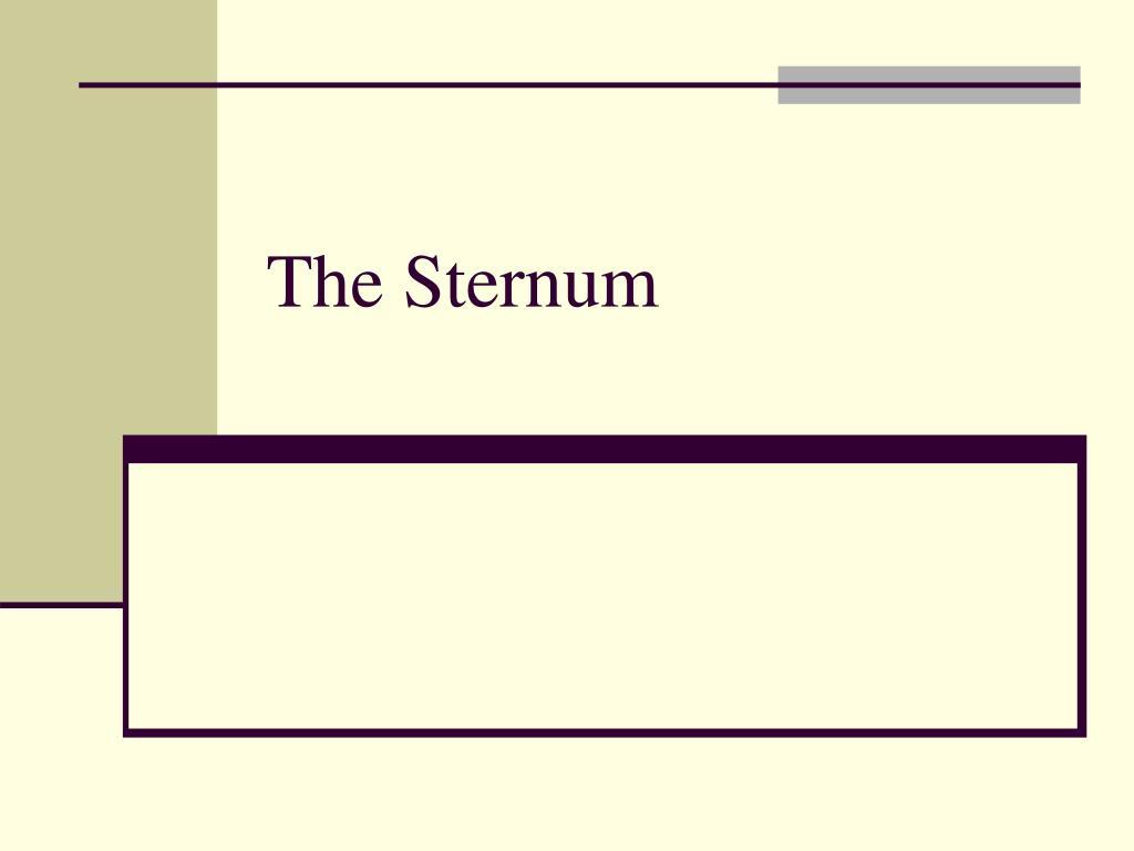 the sternum l.