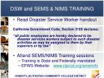 dsw and sems nims training
