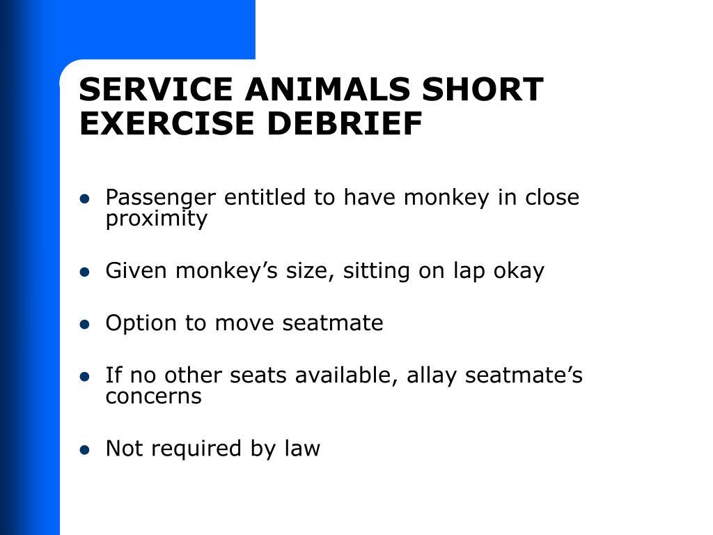 SERVICE ANIMALS SHORT EXERCISE DEBRIEF