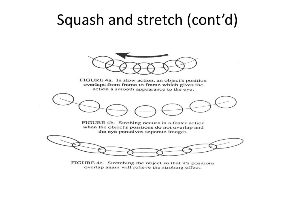 Squash and stretch (cont'd)