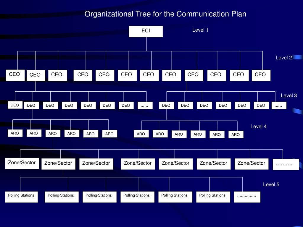 Organizational Tree for the Communication Plan