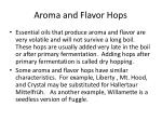 aroma and flavor hops