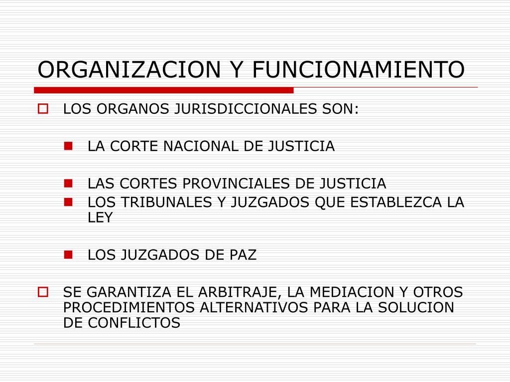 ORGANIZACION Y FUNCIONAMIENTO