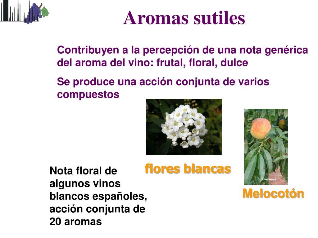 Aromas sutiles