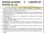 sindicalismo y libertad sindical i