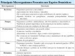 principais microrganismos presentes nos esgotos dom sticos